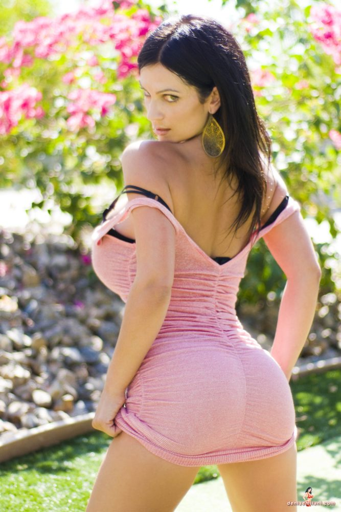 Denise Milani Pink Dress Pic
